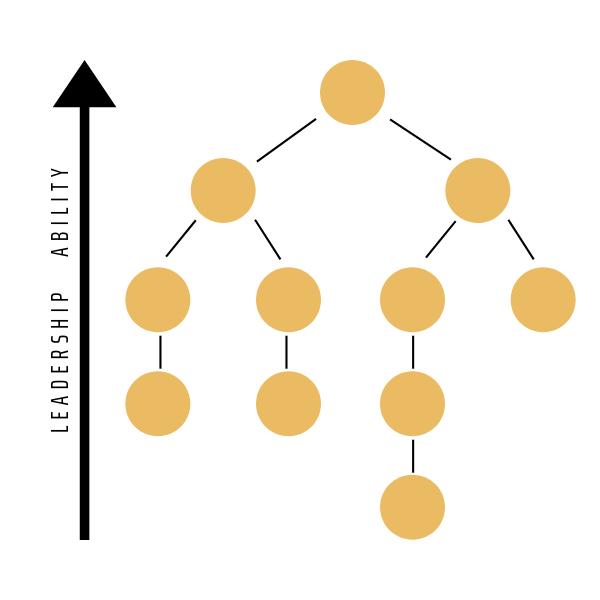 Anthony Vander Laan - Organizational Chart